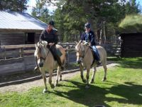 Horseback riding: from 2h to daytrips